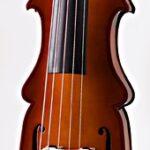 5 string (2)