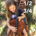 1/2 & 3/4 sized Cellos